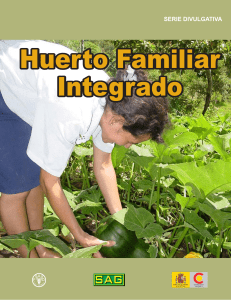 Huerto familiar integrado - FAO