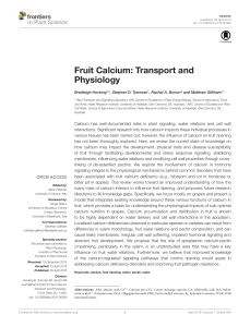 Fruit Calcium - Transport and physiology