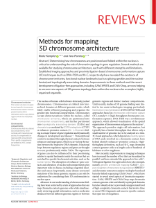 METHODS FOR MAPPING 3D CHROMOSOME