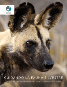 WAZA-Animal-Welfare-Strategy-2015 Spanish