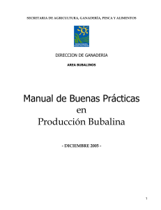 17-manual bubalinos