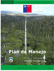 Plan de manejo alerce costero