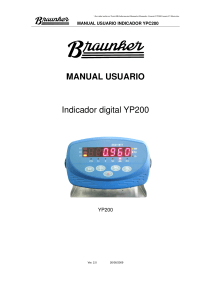 Manual de usuario YP200