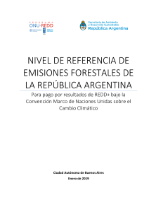 2019 submission frel argentina