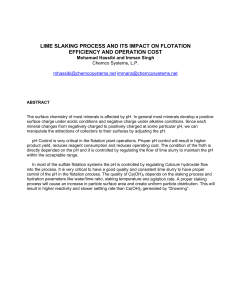 lime slaking process and its impact flotation