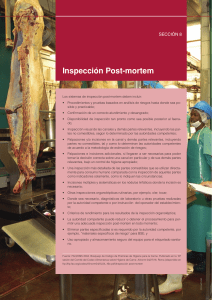 inspeccion post mortem