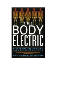 The Body Electric. Electromagnetism and the foundation of life.