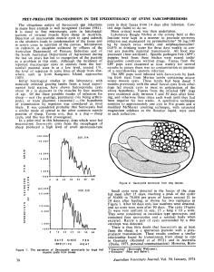 1974 ford PREY-PREDATOR TRANSMISSION IN THE EPIZOOTIOLOGY OF OVINE SARCOSPORIDIOSIS Ciclo, transmision