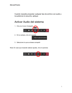 Activar audio del sistema en Teams